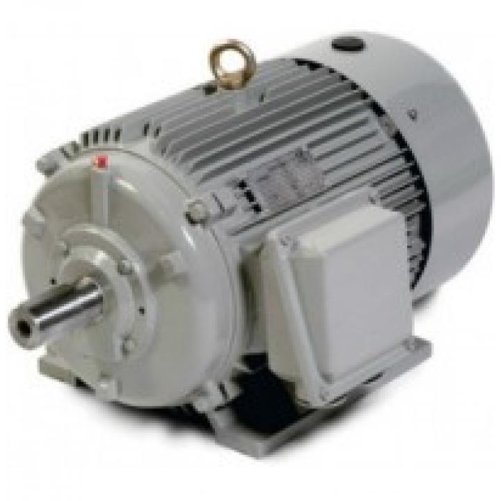 Motor cho máy rửa xe Lutian 5.5KW