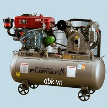 Máy nén khí chạy bằng dầu Diesel PEGASUS TM-W-1.0/8-330L
