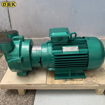 Bơm hút chân không vòng nước DBK 2BV5121 (7.5KW)