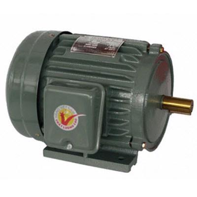 Motor điện vỏ gang chân đế Hồng Ký HKM212 (2HP)