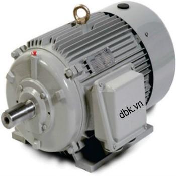 Motor cho máy rửa xe 5.5KW Lutian