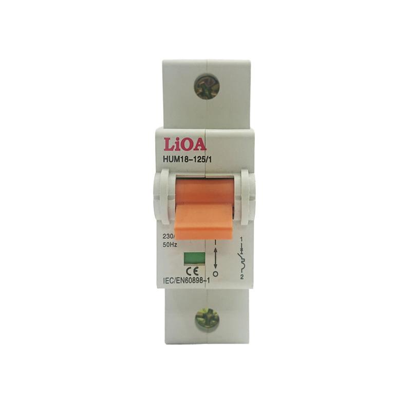 Aptomat loại 1 cực dòng điện 100A LiOA MCB1100/6