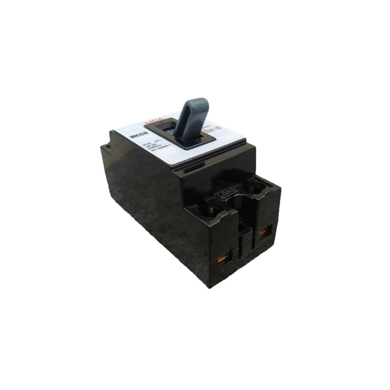 Aptomat 2P lắp nổi dòng điện 25A LiOA MCCB2P2E/25A