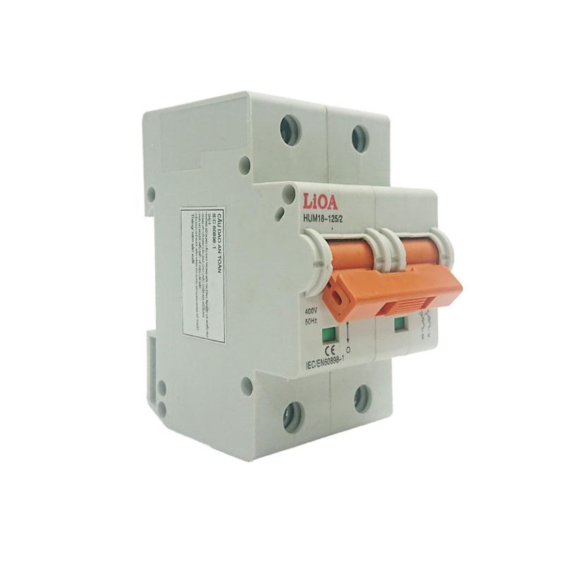 Aptomat loại 2 cực dòng điện 06A LiOA MCB2006/4,5