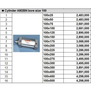 Xy lanh TPC dòng AM2BN bore size 100
