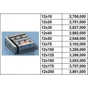 Xy lanh TPC NGQ bore size 12 dạng M - slide bearing