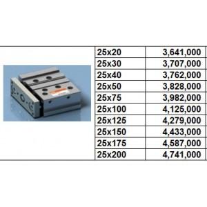 Xy lanh TPC NGQ bore size 20 dạng M - slide bearing