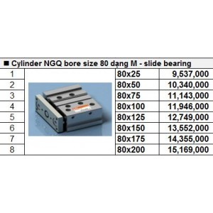 Xy lanh TPC NGQ bore size 80 dạng M - slide bearing