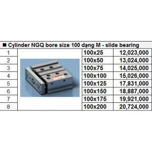 Xy lanh TPC NGQ bore size 100 dạng M - slide bearing