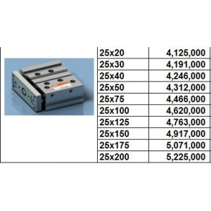 Xy lanh TPC NGQ bore size 25 dạng M - slide bearing