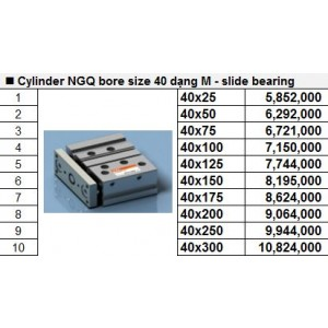 Xy lanh TPC NGQ bore size 40 dạng M - slide bearing