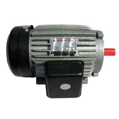 Động cơ điện Tiến Đạt 3HP KN-3