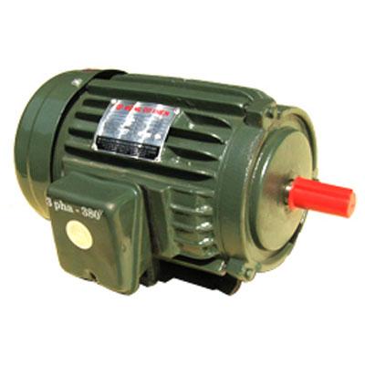 Động cơ điện Tiến Đạt 4HP 3 pha KN-4/380