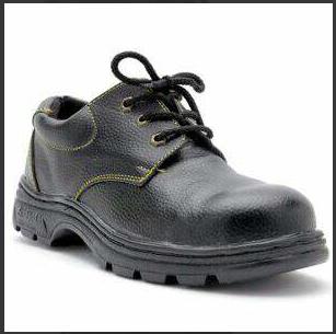 Giày ABC