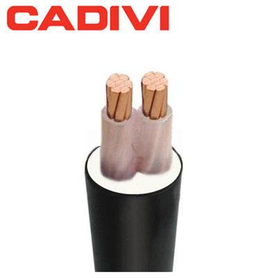 Dây Cáp Điện Cadivi CXV 2x1.0 - 0,6/1kV