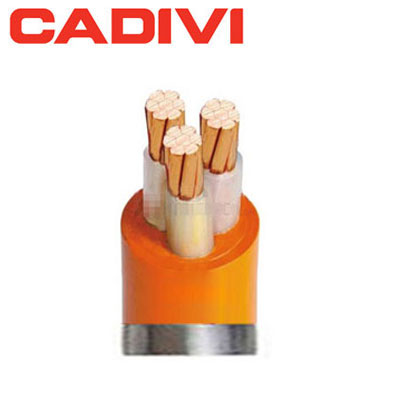 Dây Cáp Điện Cadivi CXV/FR 3x1.0
