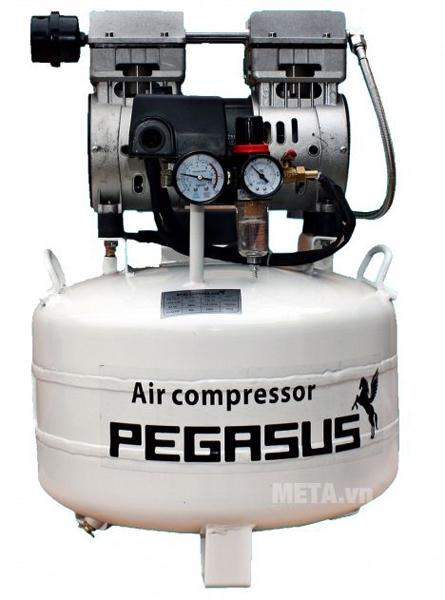 Máy nén khí không dầu Pegasus TM-OF550-40L