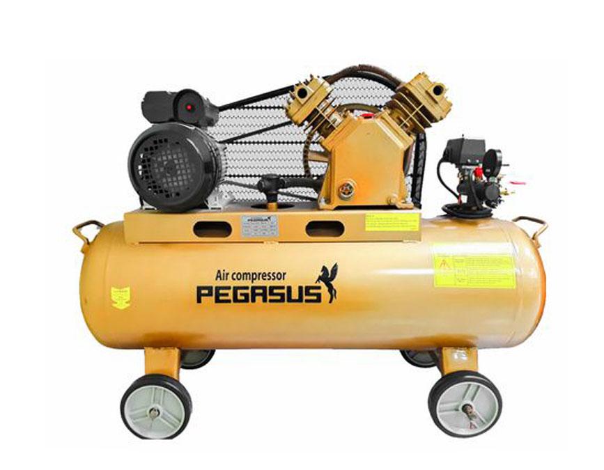 Máy nén khí Pegasus TM-V-0.25/8 (3HP - 220V)