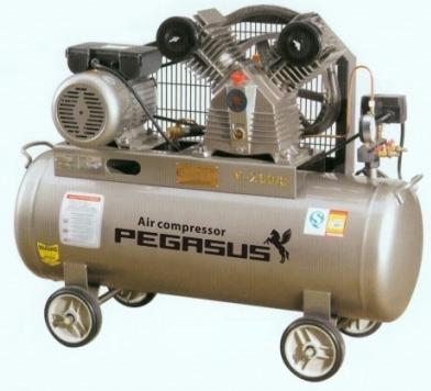 Máy nén khí Pegasus TM-W-0.9/8